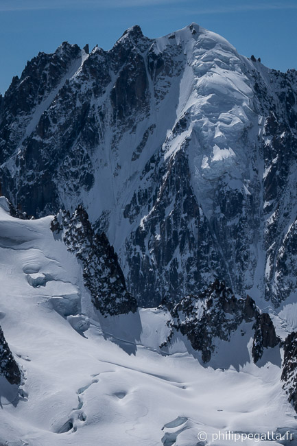 North face of Aiguille Verte (© P. Gatta)
