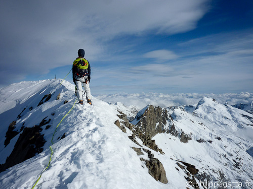 Summit of Gelas, 3143m (© Philippe Gatta)