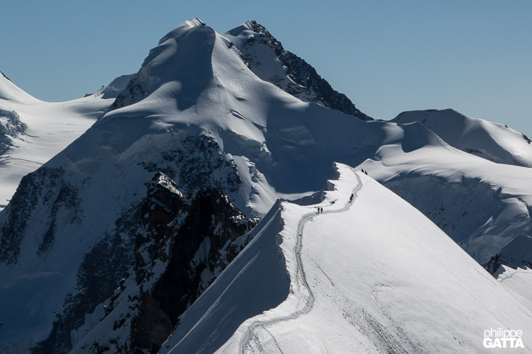 Climbers on the Central summit of Breithorn, Liskam behind (© P. Gatta)