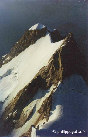Aiguille Blanche seen from the Grand Pilier d'Angle (� P. Gatta)