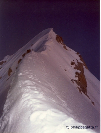 Summit ridge of Aiguille Verte (� P. Gatta)