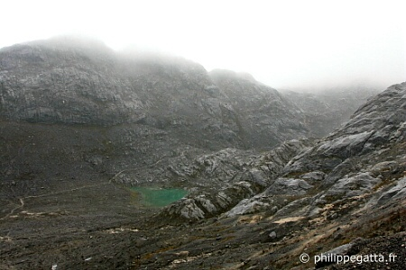 Trail from the first pass above BC to Carstensz's face (� P. Gatta)