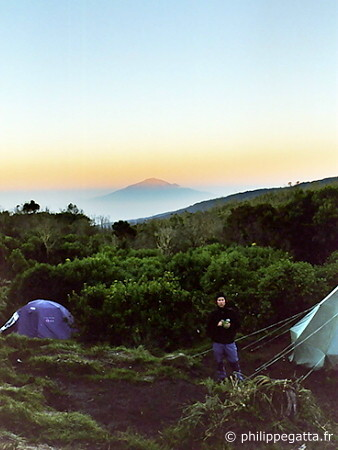 Shira camp, Mount Kilimanjaro (� P. Gatta)