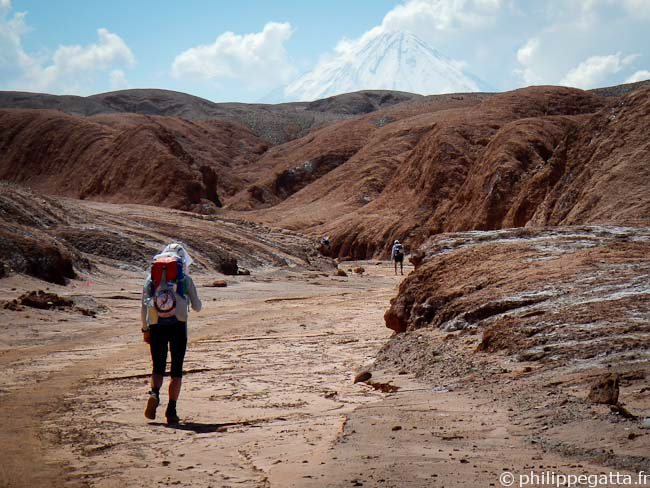 Anna in the last Canyon, Licancabur Volcano in the background (� P. Gatta)