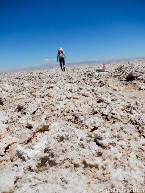 In the Atacama salt flat (� P. Gatta)