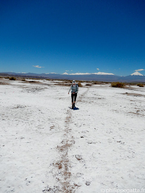 Anna in the Atacama salt flat, the Andes behind (© P. Gatta)