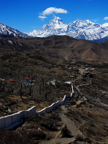 Dhaulagiri from Muktinath (Photo Wikimedia Commons)