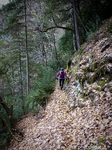 Steep Trail between Condamine and Ilonse (© Philippe Gatta)