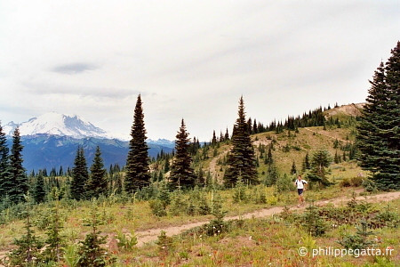 During the White River Trail, Mount Rainier behind (� P. Gatta)
