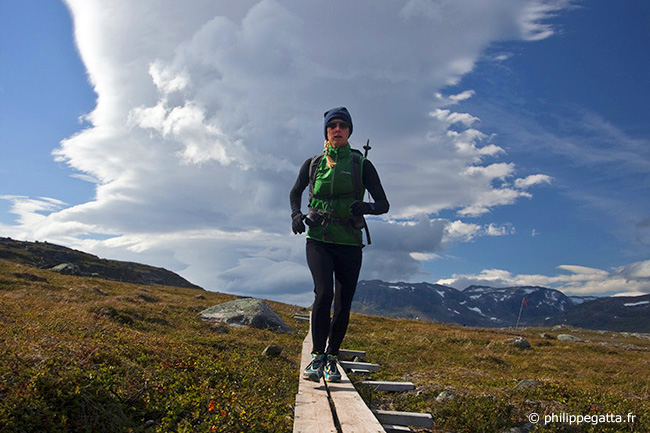 Anna fighting the arctic winds after Tjaktja Pass close to Alesjaure (© P. Gatta)