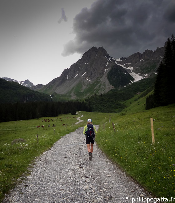 TMB: on the way to the Col du Bonhomme (© P. Gatta)