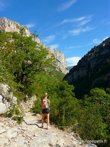 Canyon of Verdon (© P. Gatta)