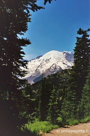 Mount Rainier (© P. Gatta)